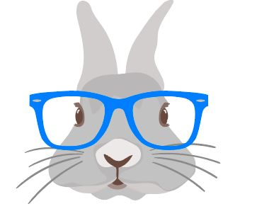 Bunny with Blue glasses Heat Transfer
