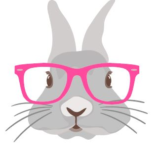 Bunny with Pink Glasses Heat Transfer