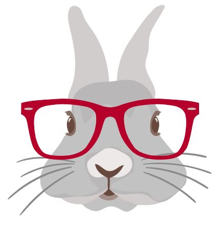 Bunny with red glasses Easter Heat Transfer