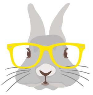 Bunny with Yellow glasses Heat Transfer