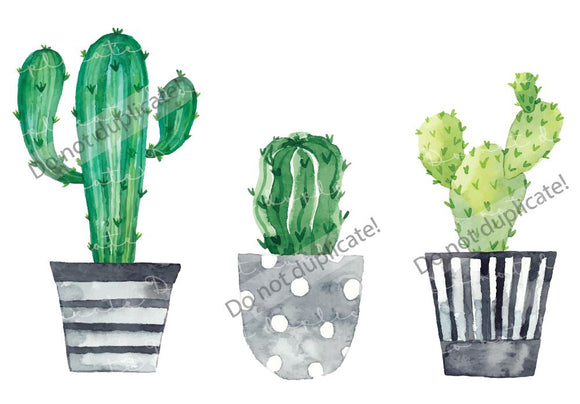 Cactus/Succulents in Pots Vinyl Heat Transfer