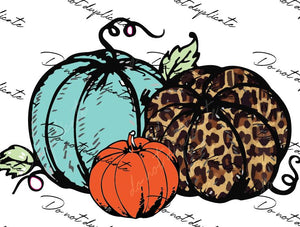 Leopard, Teal & Orange Pumpkins Heat Transfer