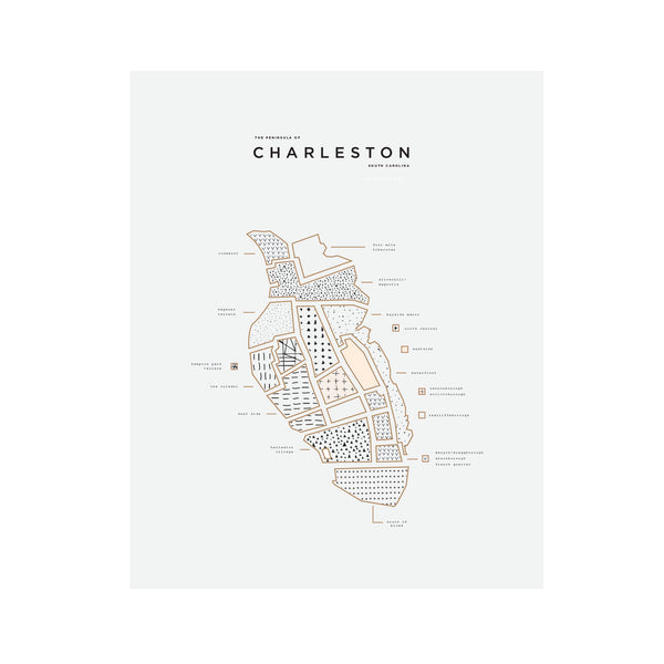 Charleston South Carolina Map Print