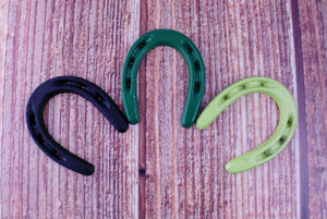 Lucky Horseshoe Pick Your Color Miniature Rustic Decor Horse Lovers St Patricks Day Horse Shoe Cowboys Wild West Party Favor