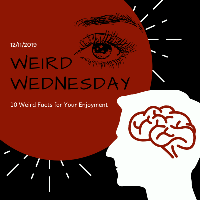 Weird Wednesdays - 1O Weird Facts For Your Enjoyment