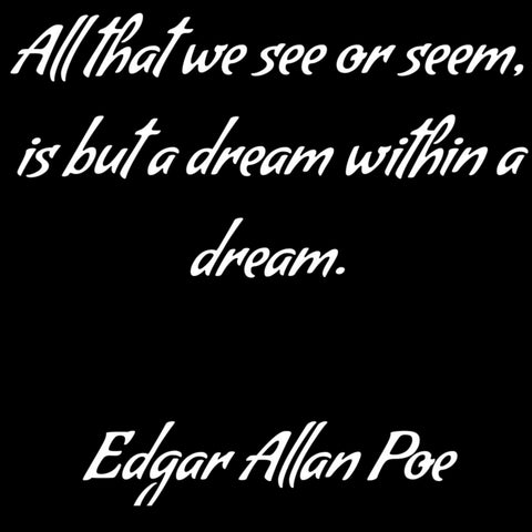 All that we see or seem, is but a dream within a dream - Edgar Allan Poe