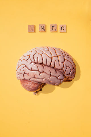 Brain with the word info on scrabble tiles
