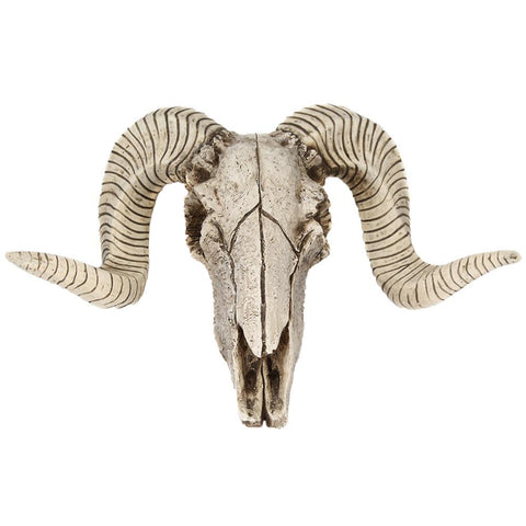 Resin Cast Rams Skull Wall Hanging