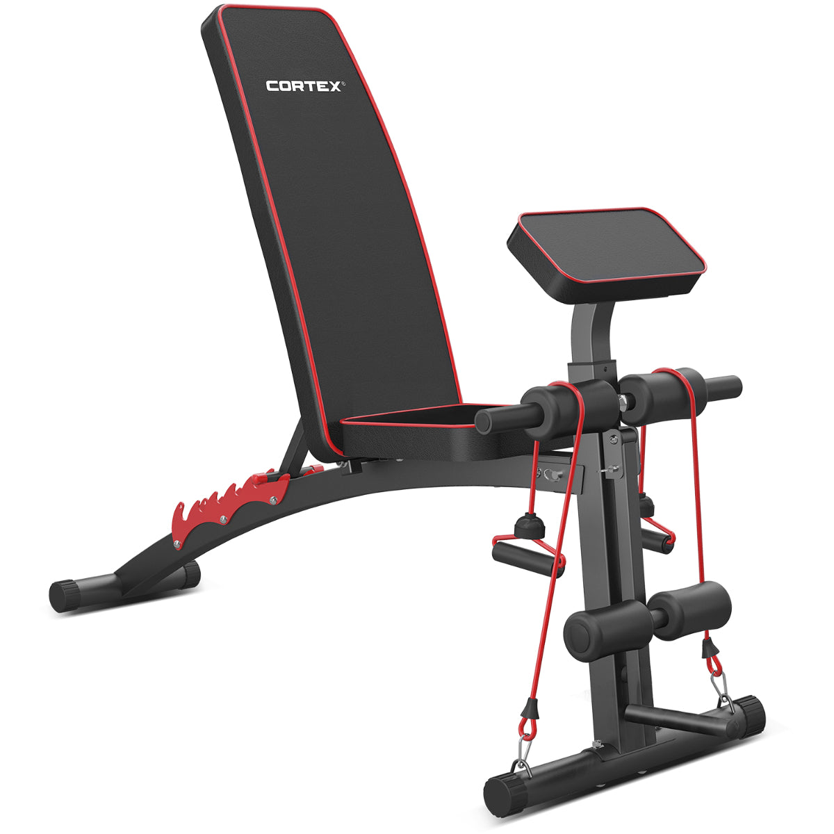 CORTEX BN-2 Adjustable Bench | Lifespan Fitness