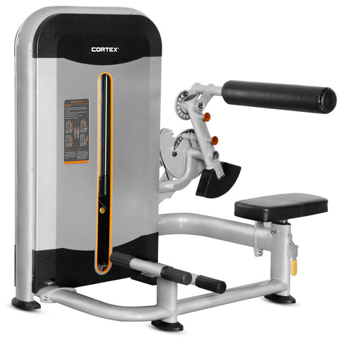 OMEGA Series ABE-10 Abdominal Machine And Back Extension