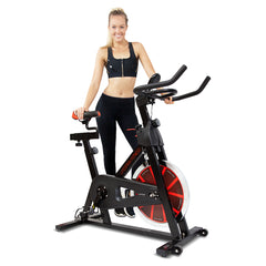 SP-310 Spin Bike