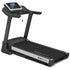 Bolt Treadmill