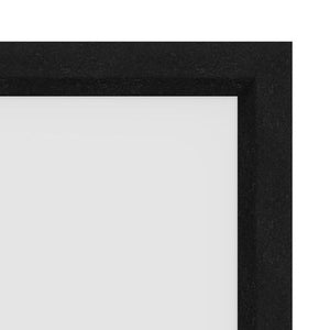 Pro-Trim Light Absorbing Covering on Cinema Contour Frame