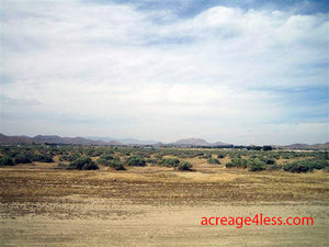 CALIFORNIA:  2.5 ACRES IN KERN COUNTY, CALIFORNIA - PROPERTY ID: #244-432-29 -  $6,500 / $450 DOWN