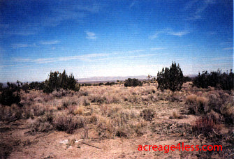 CALIFORNIA: 2.5 ACRES IN NORTHERN LOS ANGELES COUNTY, CALIFORNIA - PROPERTY ID: #3089-007-16 - $8,500 / $500 DOWN