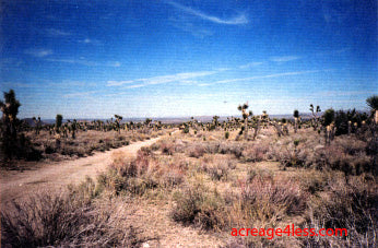 CALIFORNIA: 2.5 ACRES IN NORTHERN LOS ANGELES COUNTY, CALIFORNIA - PROPERTY ID: #3089-007-15 - $8,500 / $500 DOWN