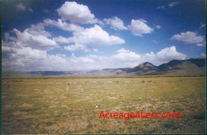 NEVADA 40.2 ACRES LOCATED IN THE BATTLE MOUNTAIN AREA OF LANDER COUNTY - $27,995 / $500 Down - ID# BMTR-11-561-472