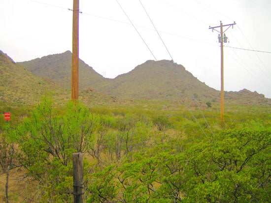 10.06 ACRES TEEPEE RANCHES, TEXAS - PROPERTY ID: #TP-06-A-267 - $13,990 / $550 DOWN