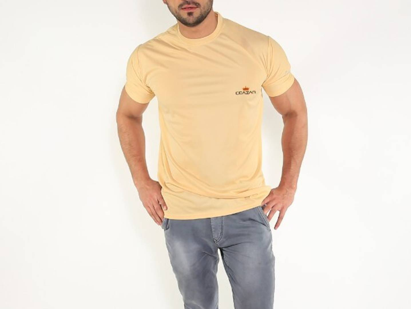 Men's Beige Solid Polyester Round Neck T-Shirt