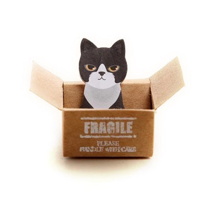 Cat in the Box Memo - Fragile