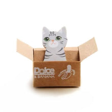 Load image into Gallery viewer, Cat in the Box Memo - Banana