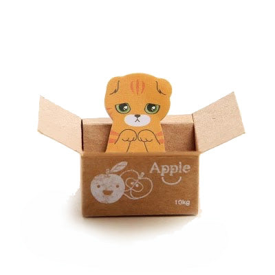 Cat in The Box Memo - Apple