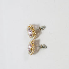 Load image into Gallery viewer, ESN042-Pink Jewel Earrings