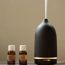 Load image into Gallery viewer, Aroma Essential Oils Diffuser / Rose - OG Design by Toast (Free Shipping)