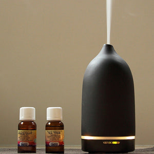 Aroma Essential Oils Diffuser / Rose - OG Design by Toast (Free Shipping)