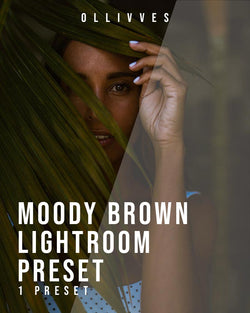Moody brown preset for Lightroom mobile and desktop by Ollivves