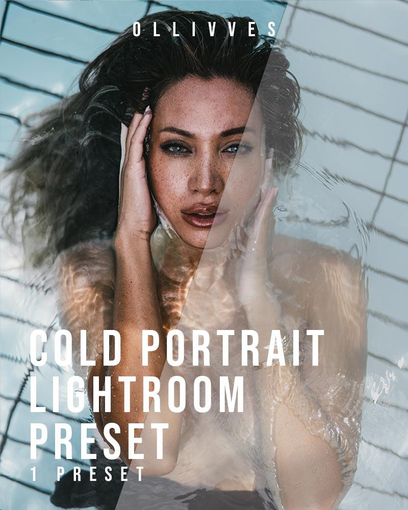 Portrait preset Lightroom mobile and desktop by Ollivves