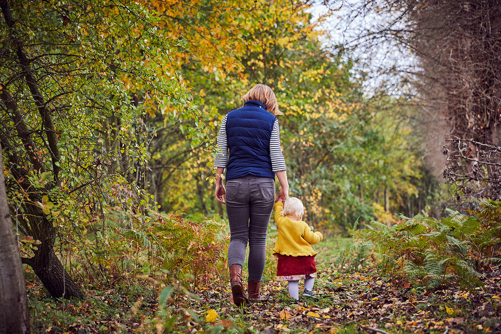 Autumn walk in the woodland