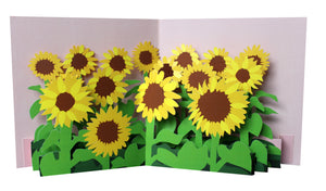 Pop up card - Sunflowers
