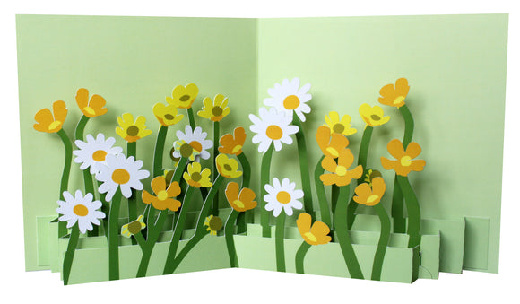 Pop up card - Buttercups & daisies