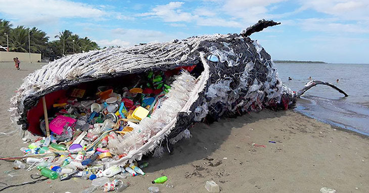 Dead whale art piece - ocean pollution
