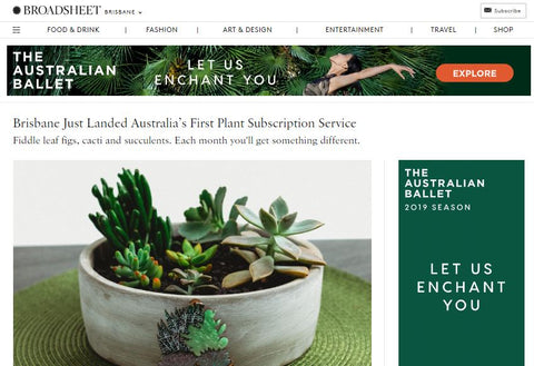 Broadsheet Botanic Box Australia Indoor Plant Subscription Service Brisbane gold Coast Sunshine Coast