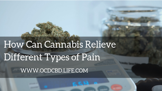 How Can Cannabis Relieve Different Types of Pain?