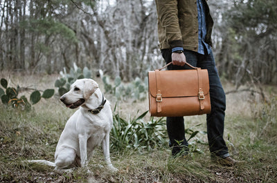 Nala wearing Brown Country Dog Collar. Falcon carrying Porter Satchel.