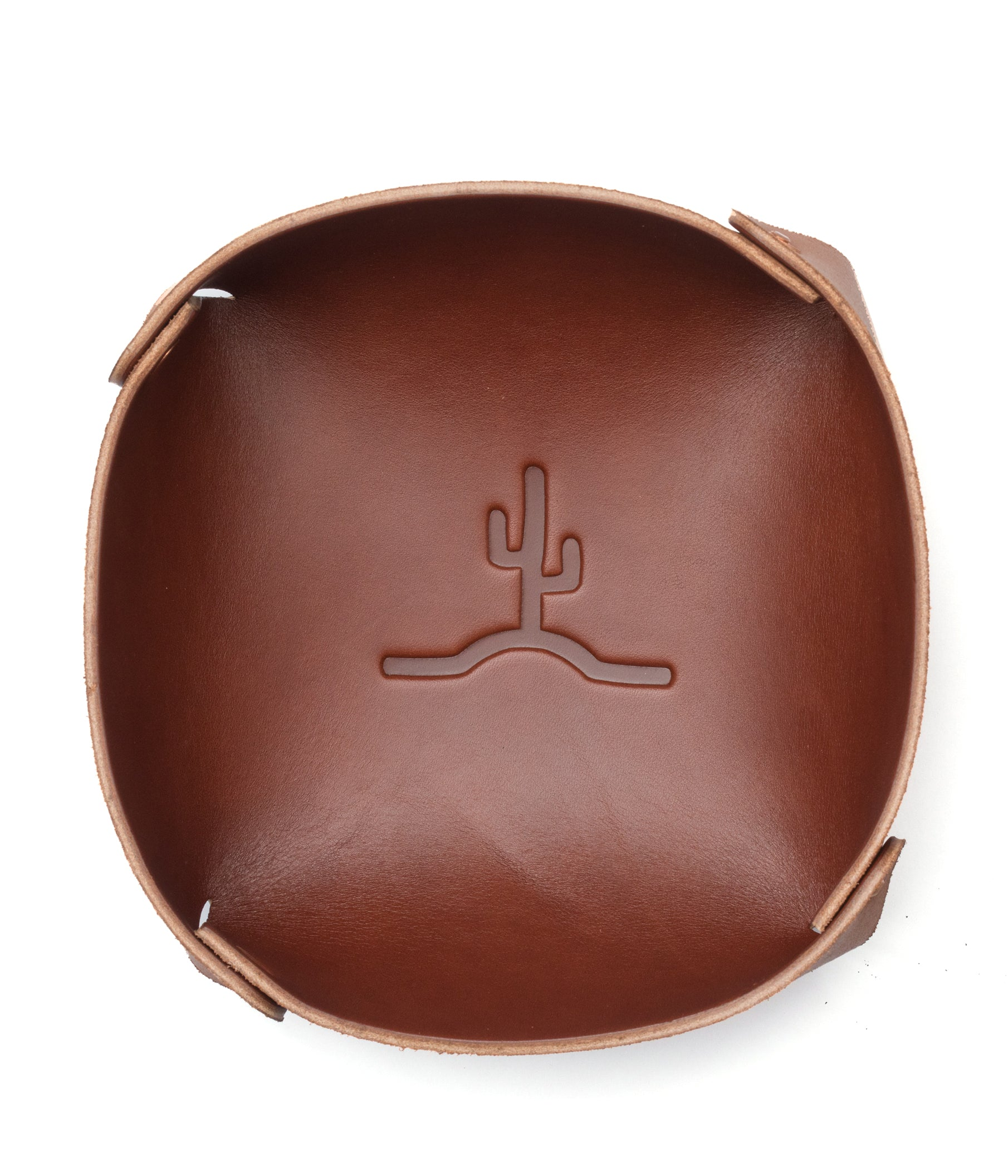 Flying Cactus Catch // Medium Brown