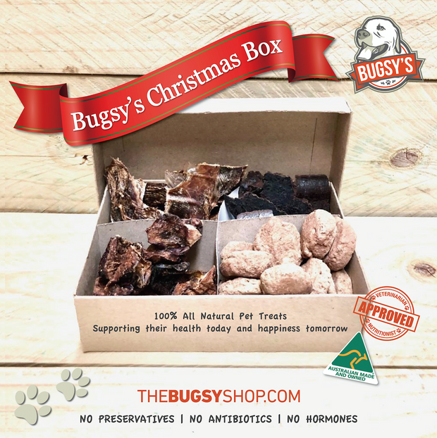Bugsy's Christmas Box