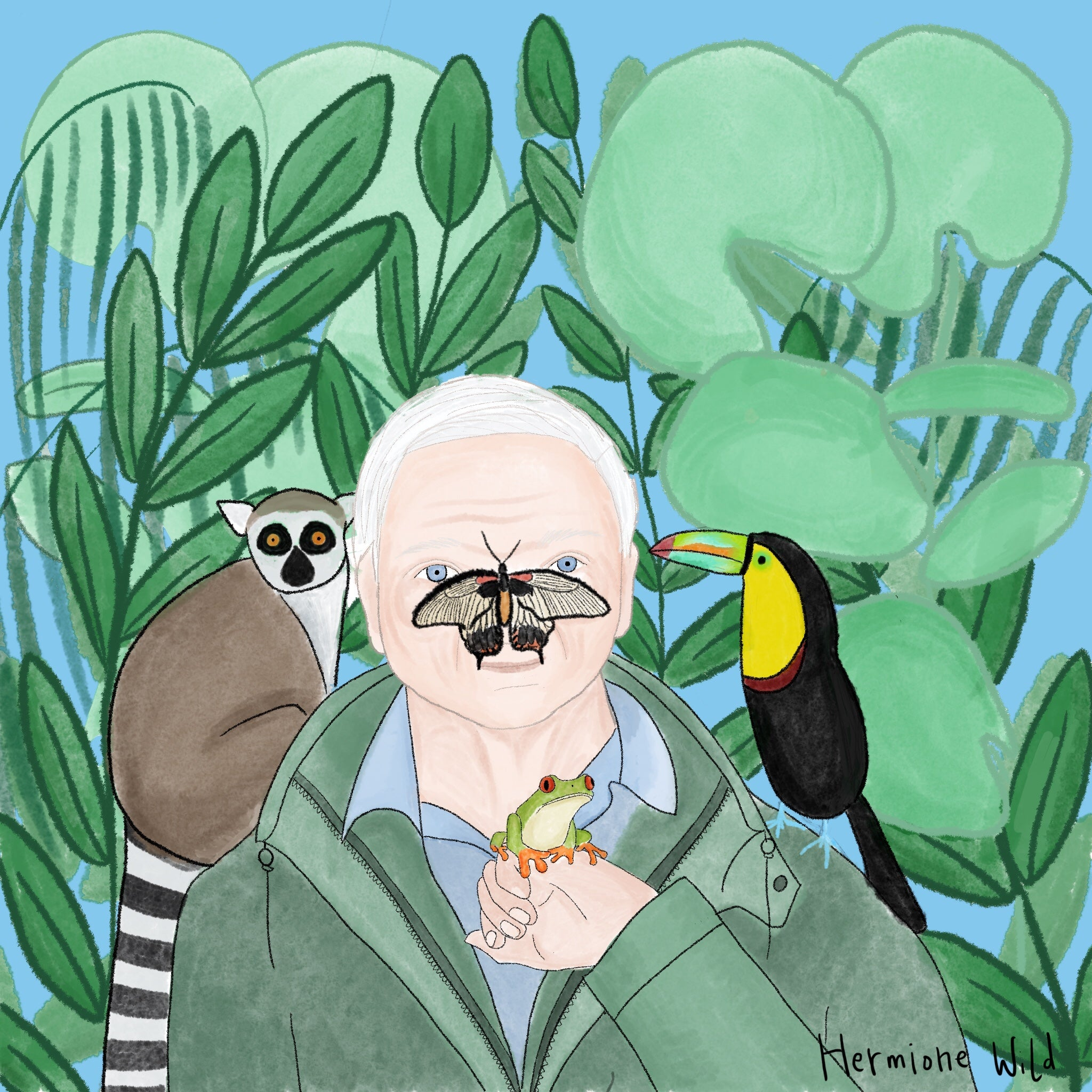 Illustration of David Attenborough with lemur and toucan on his shoulders, tree frog on his hand and butterfly on his nose. Surrounded by plants.