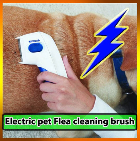 Electric pet dog mites Flea cleaning brush