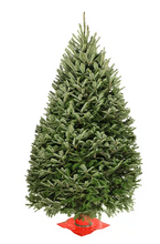 Load image into Gallery viewer, 4 foot christmas tree delivered in mail