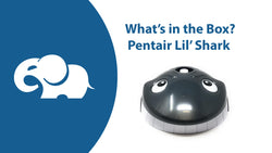 Pentair Lil Shark above ground pool cleaner