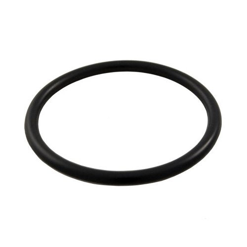 Hayward O-Ring for Winter Plug - ePoolSupply