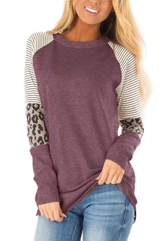 Striped and Leopard Color Block Sleeves Top