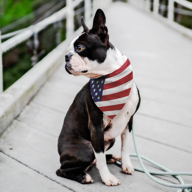 Patriotic Pet Bandana