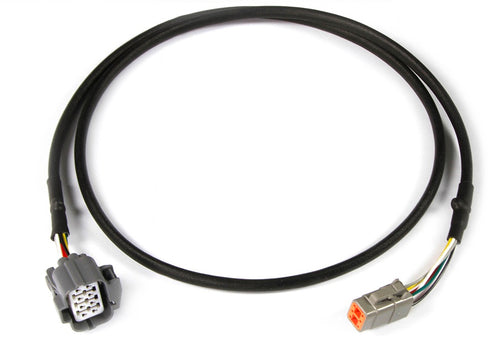 Haltech Nexus R5 NTK wideband adaptor harness - HT-010727