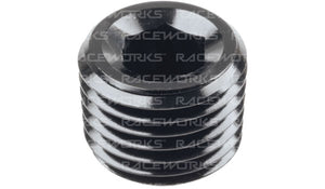 Raceworks IN Hex NPT Plug