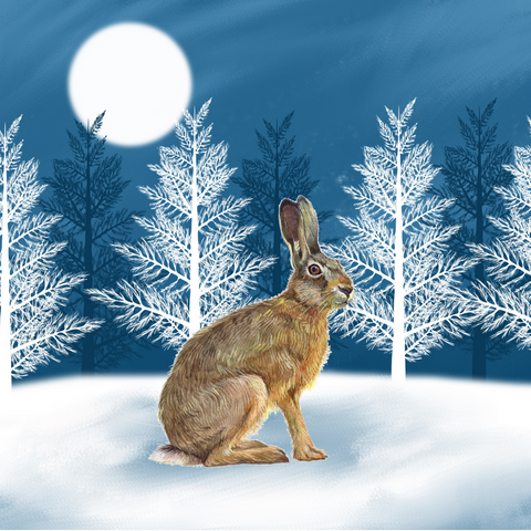 'Christmas Hare' - Pack of 10 Christmas cards